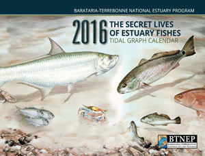 2016-tidal-graph-calendar